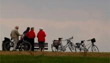 Fietsers op de Rijndijk bij Rees