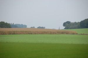 Landschap bij Kranenburg
